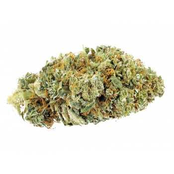 Juicy fruit cbd en gros