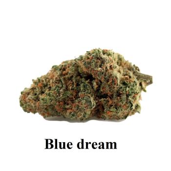 Fleurs de cbd BLUE DREAM