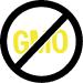 Immunity Evielab Sans OGM