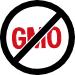 Sport Evielab Sans OGM